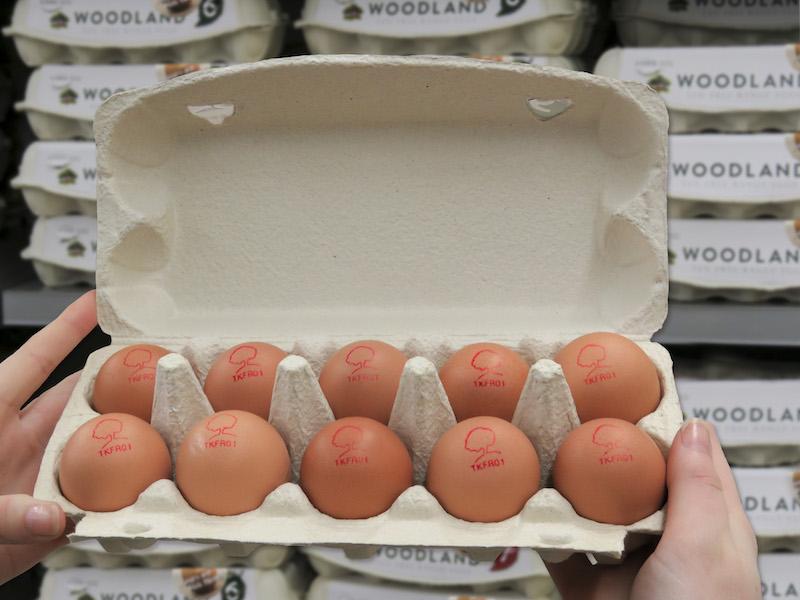 Woodland-egg-stamps