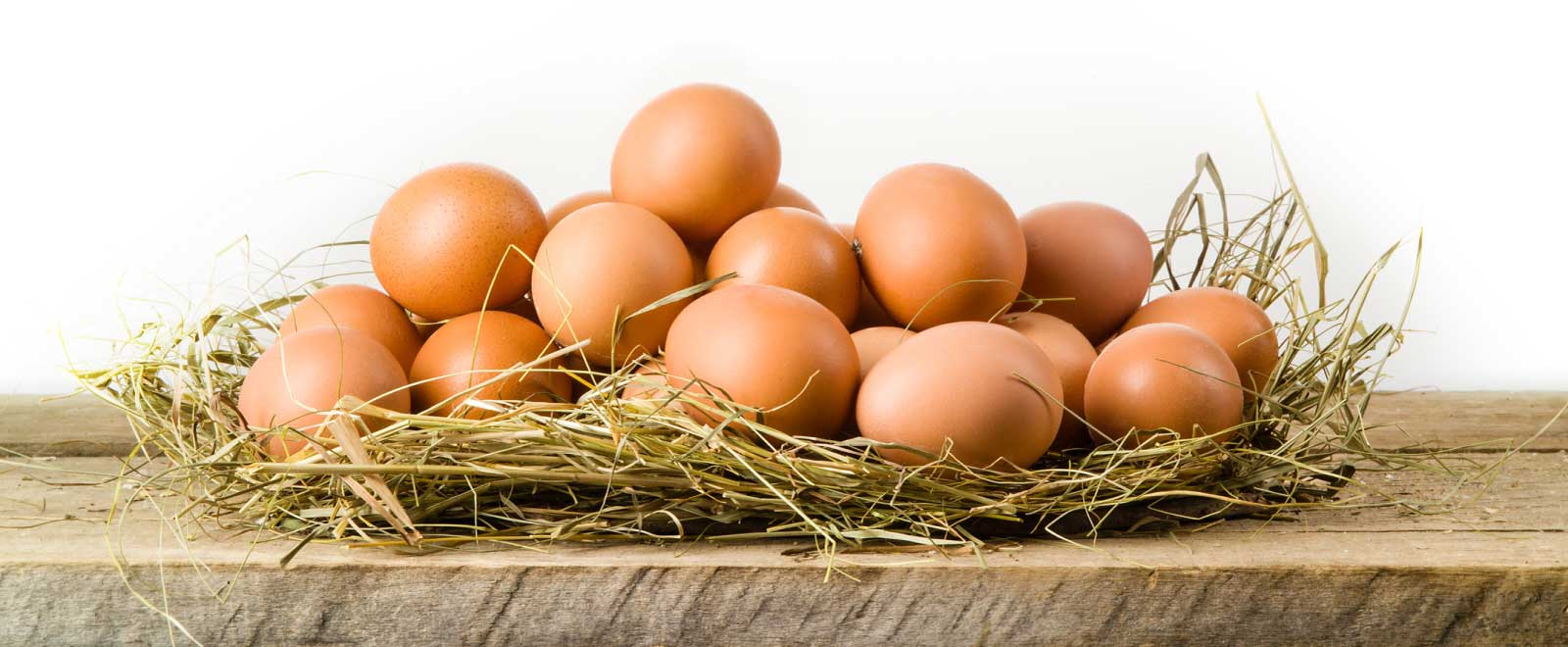 eggs in a pile of straw
