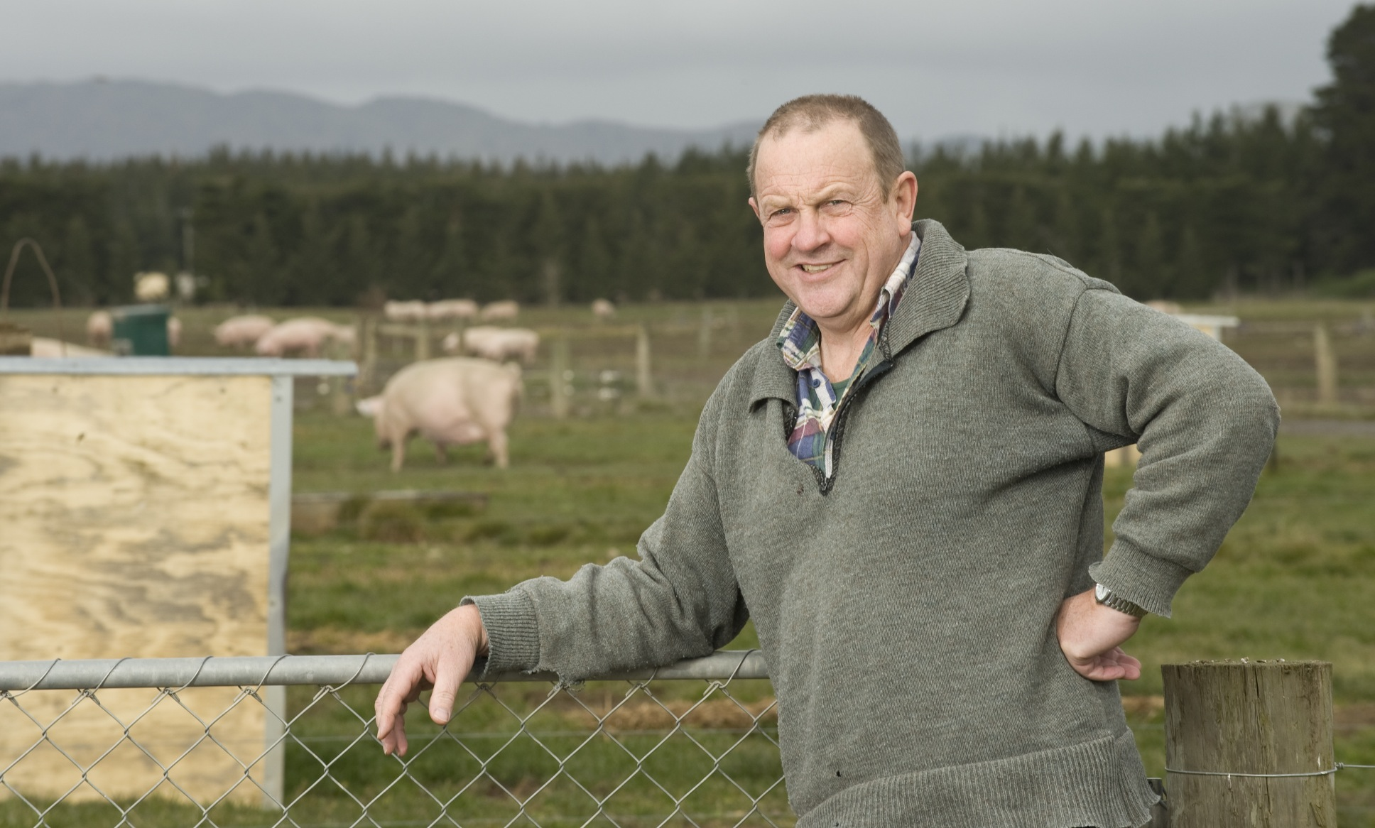 Steve Stern, Countdown supplier and owner of Patoa Farms in Canterbury