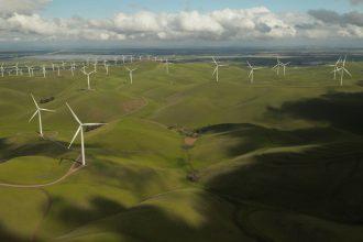 Windmills in green field