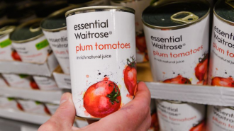Waitrose canned tomatoes held by hand