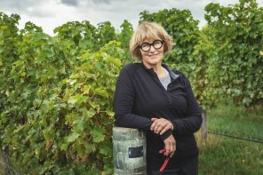 Kiwi Winery World-First to Use Green Tea as Natural Preservative