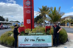 Worms, The Latest in Sustainability for New World Orewa