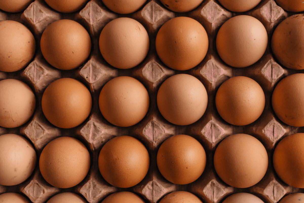 Precautionary Controls for NZ Egg Producer